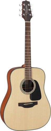 takamine_gd10-ns_pion.png